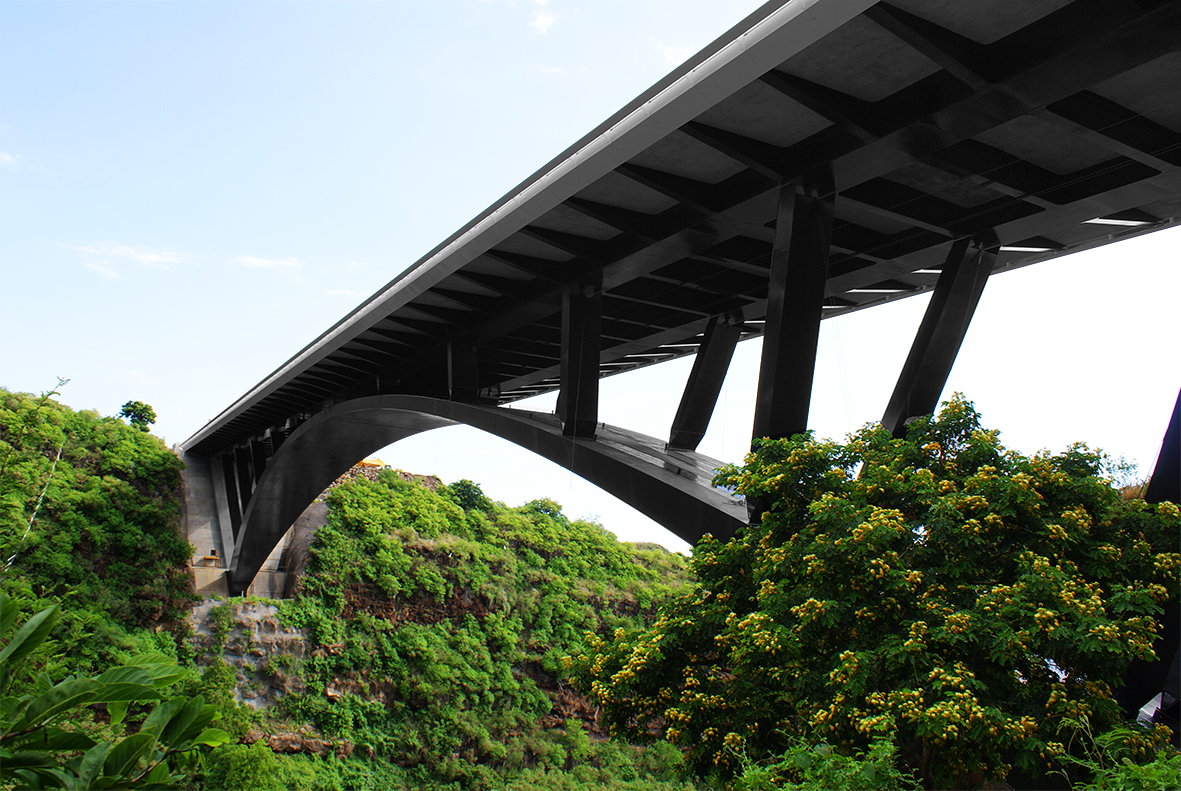 VERTIC's COMBILIGNE inclined lifeline system on the Pont de la Ravine Fontaine's bridge on the Reunion Island